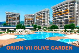 ORION VII OLIVE GARDEN